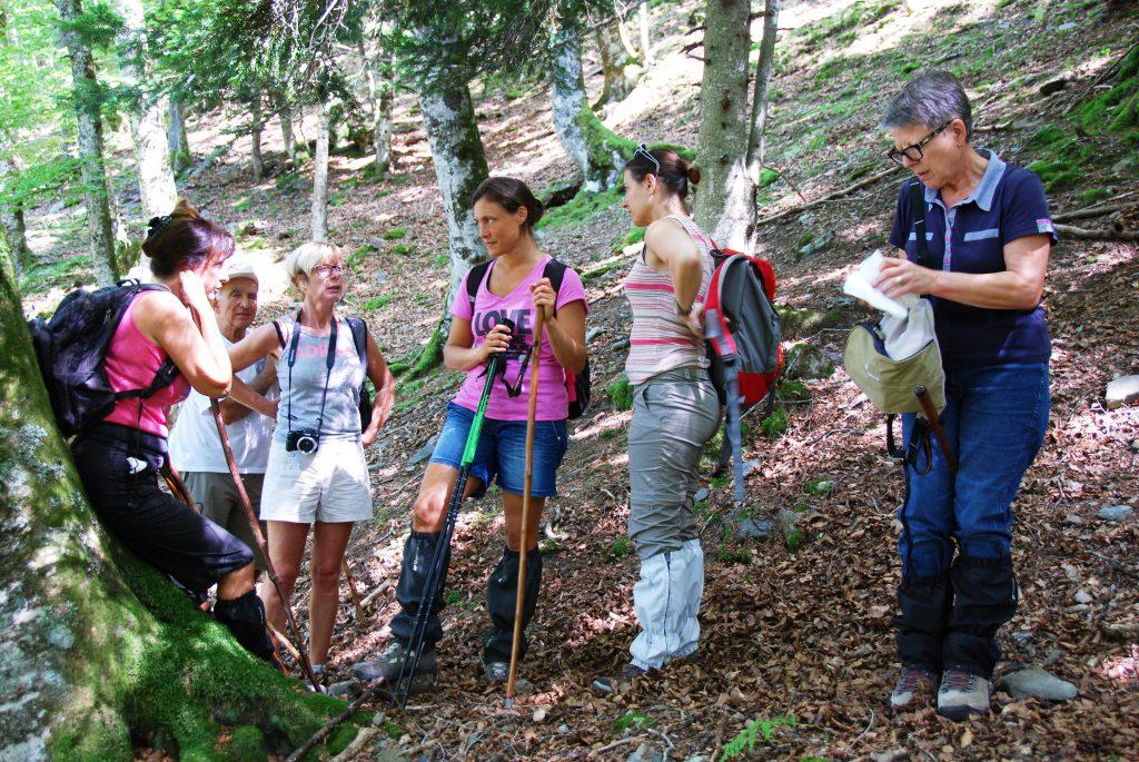 Le groupe tente d'expliquer à Marie qu'avec son sac elle ne pourra pas laisser de poils sur cet arbre.